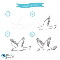 Dibuja un águila
