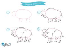 aprende a dibujar un bisonte paso a paso