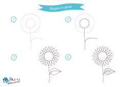 aprende a dibujar un girasol