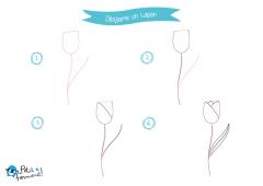 aprende a dibujar un tulipan