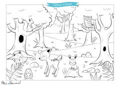 Dibújame El Bosque I Dibujos Petit Fernand Es